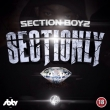 Section Only