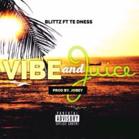 Vibe & Juice ft. TE dness